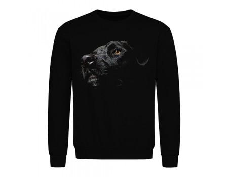 Свитшот мужской черный Собака m609