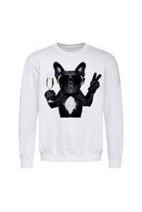 Світшот чоловічий білий собака в окулярах m603