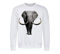 Свитшот мужской белый Слон m605